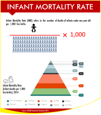 ASEAN Infant Mortality Rate